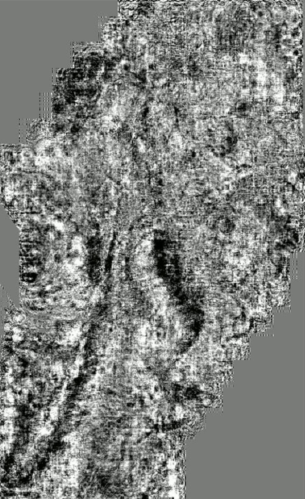 reprocessing_ts_frame_0001